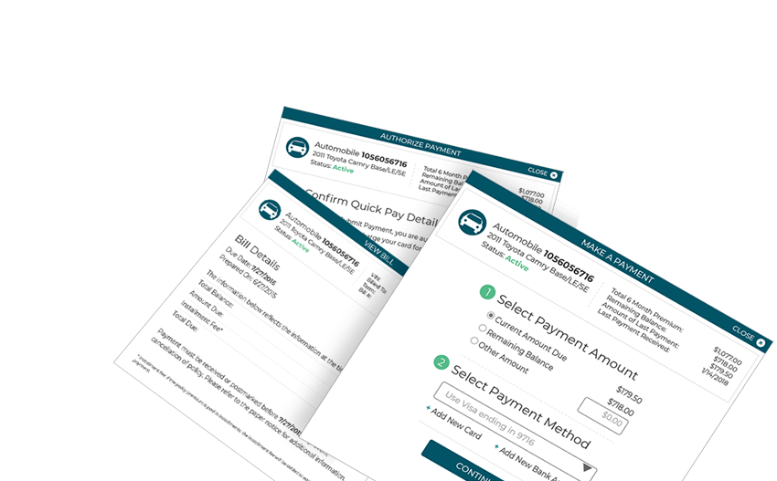 Payment Input Forms
