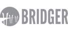 Bridger Insurance Logo