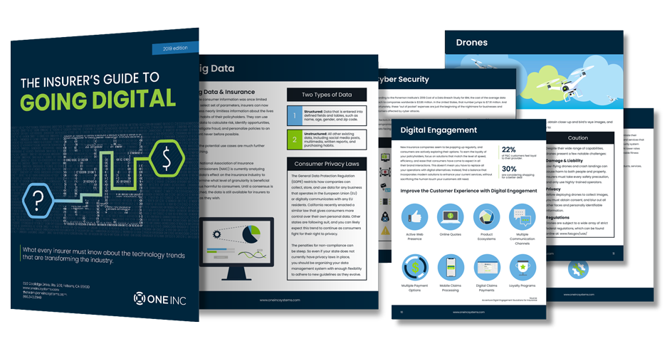 The Insurer's Guide to Going Digital eBook